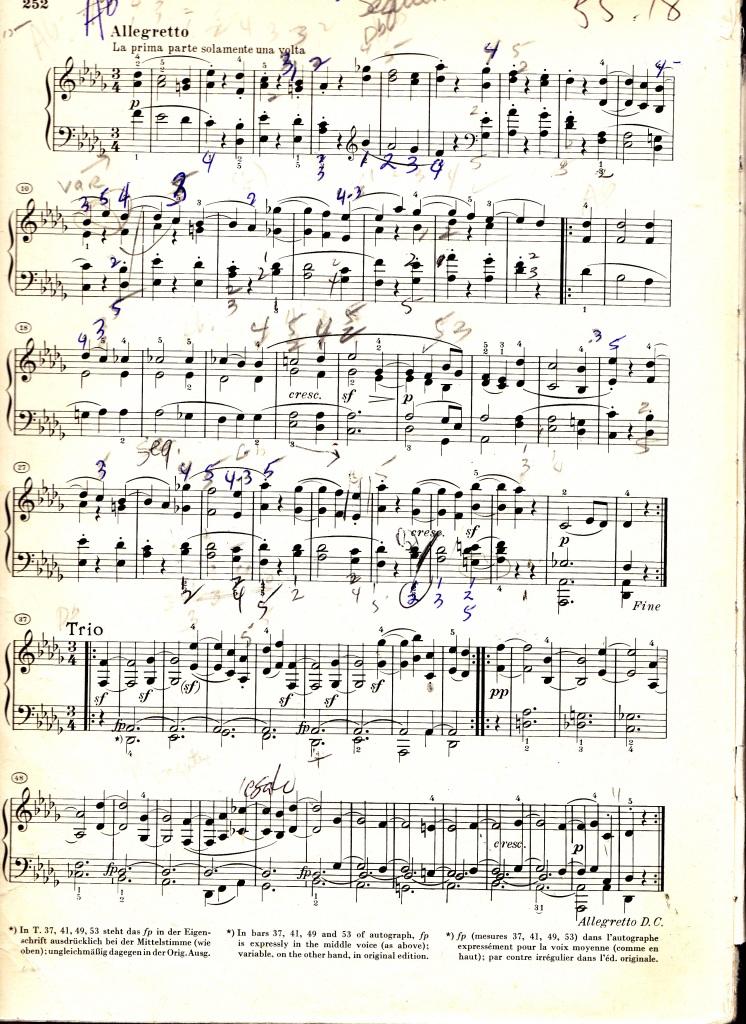 Beethoven Allegretto