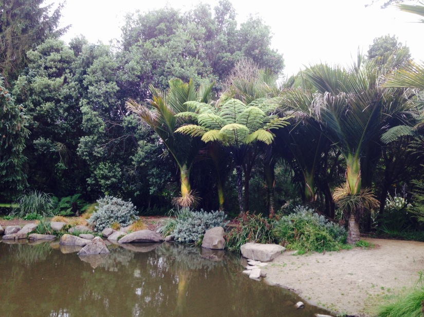 pond to the side and palms